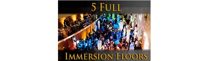white-rose-gala-5-full-immersion-floors
